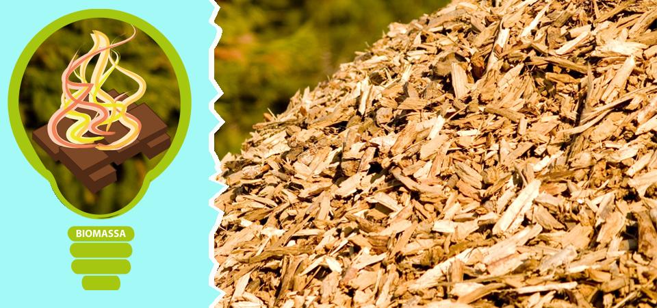 Energia da biomasse: aspetti tecnico-economici, normativi, ambientali